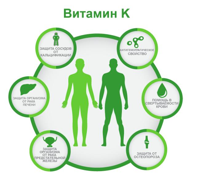 Польза витамина К К1, K2, K3, K4, K5, K6, К7 филлохинон, нафтохинон, менаквинон, менатетренон