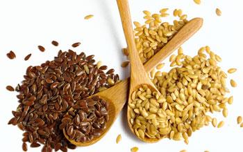 Льняное семя польза и вред как принимать