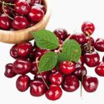 Польза и вред черешни для здоровья организма