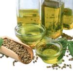 Конопляное масло польза и вред