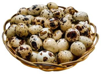 перепильные яйца