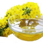 Рыжиковое масло польза и вред для организма человека