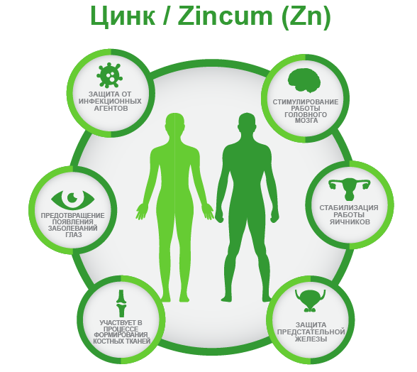 Цинк / Zincum (Zn) Для чего нужен организму