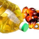 Пальмовое масло польза и вред для здоровья организма человека
