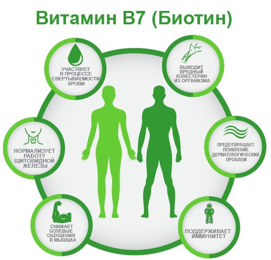 витамин B7 Биотин