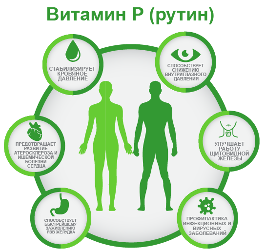 витамин P ифографика
