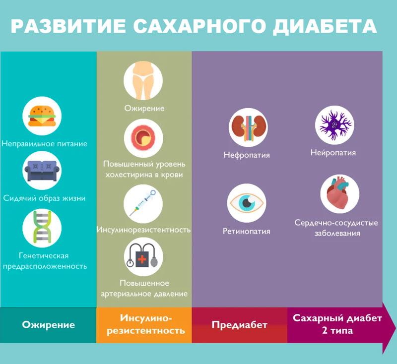 РАЗВИТИЕ САХАРНОГО ДИАБЕТА ифографика